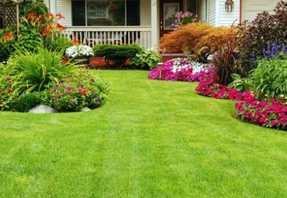Landscaping and Garden Maintenance in Cremorne