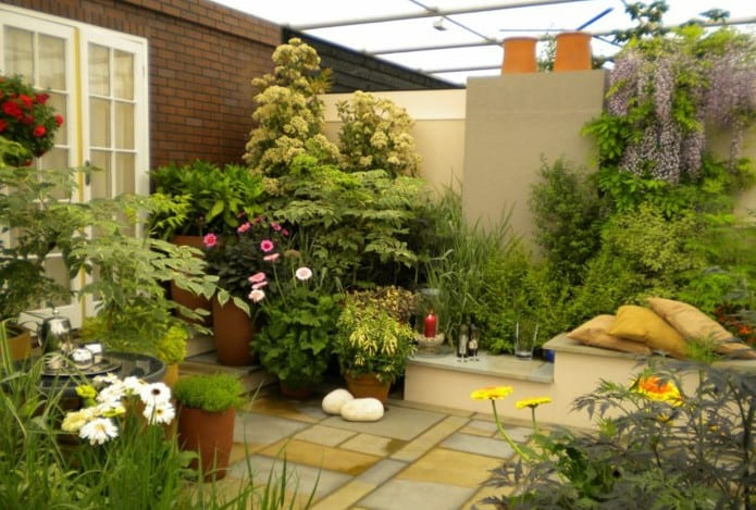enviroment friendly garden design