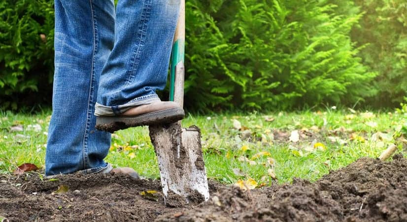 gardener digging up dirt in backyard