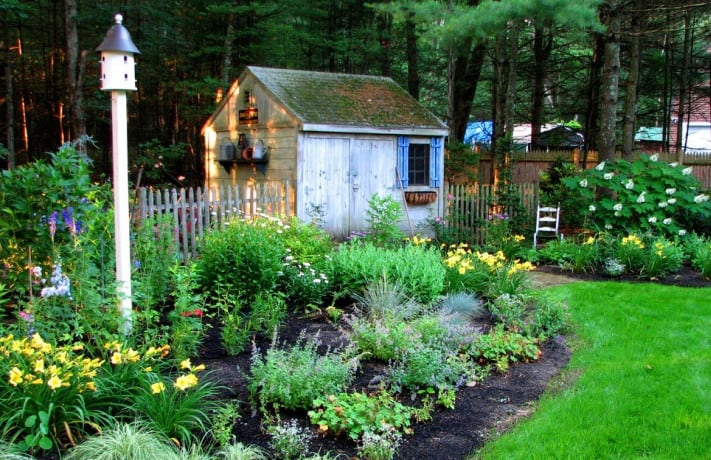 ideas for ladnscaping for summer
