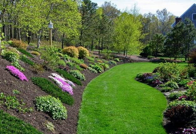 Landscaping Ideas Backyard With Hill on Hill Backyard Ideas id=83735