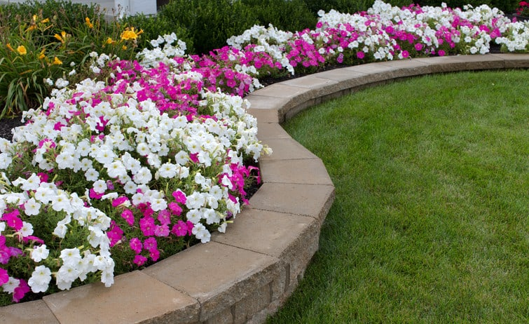 retaining walls along the garden