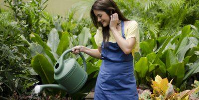 woman watering plants in a garden in Sydney