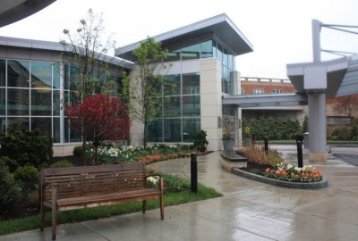 commercial landscaping maintenance costs