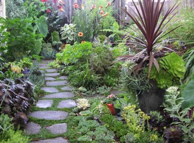 eco friendly landscaping design ideas
