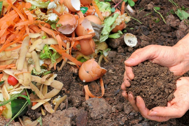 creating a compost pile