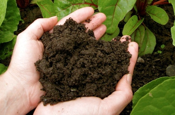 improving garden soil