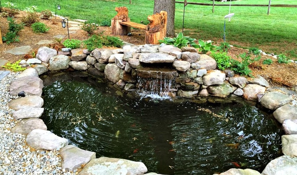 Why koi ponds are so popular in sydney for Koi carp pond design