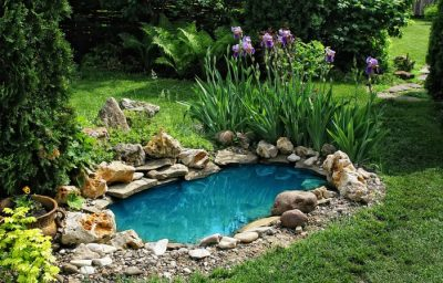 backyard ideas with small pond
