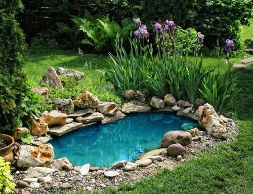 How to Create a Peaceful Backyard in Sydney