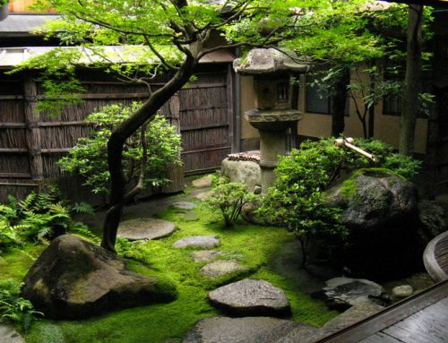 Why Japanese Gardens Are So Awesome
