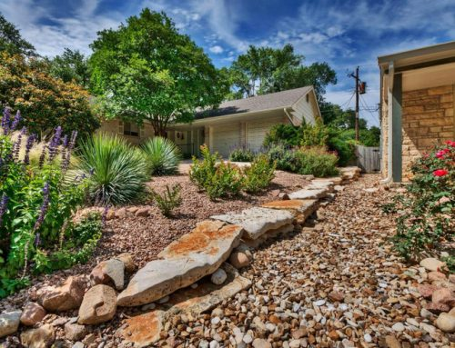 Xeriscaping – What It Means, Plant Options and Designs