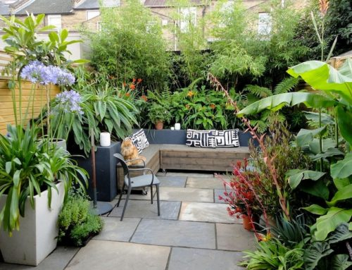 13 Landscaping Ideas for a Small Backyard in Sydney