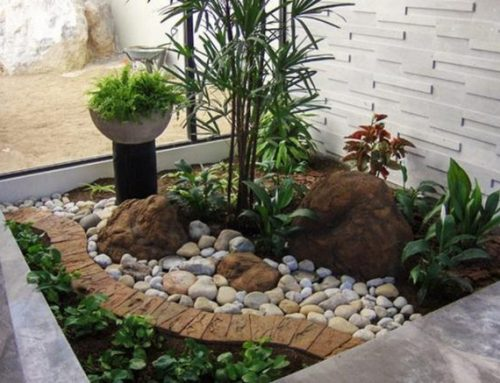 How To Build A Rock Garden in Sydney