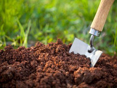 Ph Value needed for Better Soil