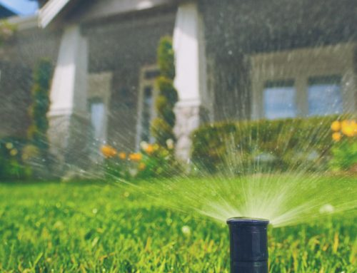 Plumbing Problems to be Aware of when Landscaping your Garden