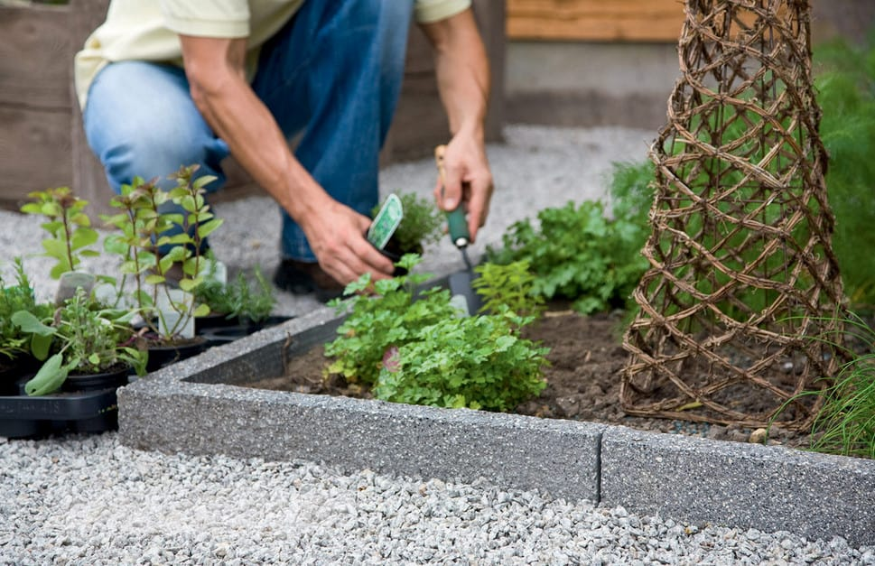 9 Amazing And Affordable Ideas On Landscape Edging