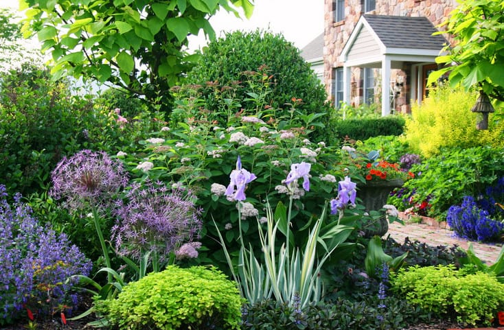 beautiful lush garden in front of the house