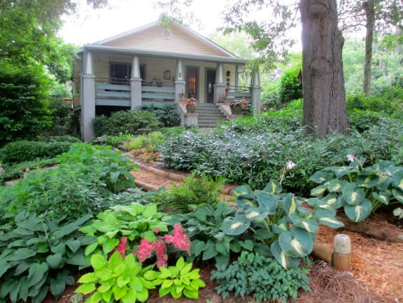 landscaping front yard with hostas