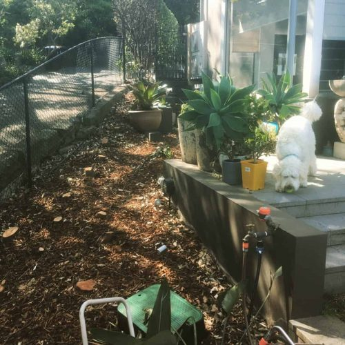 Clontarf landscaping project 5