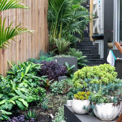 Clontarf landscaping project 1