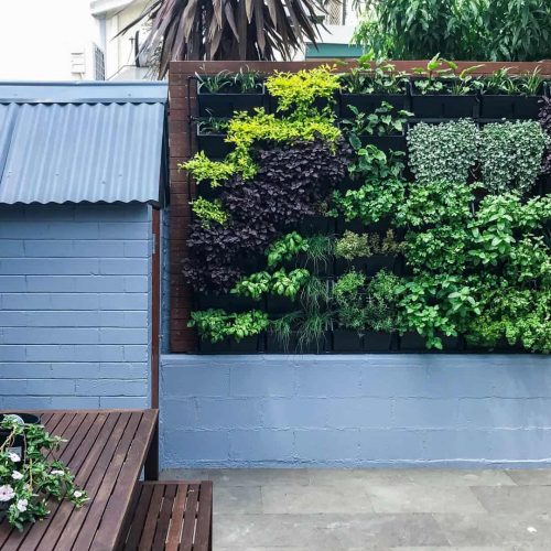 Green walls landscaping project 5