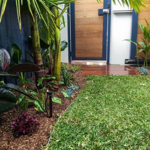 North Bondi landscaping project 8