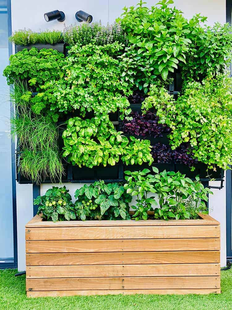 Sturdee Parade planter box