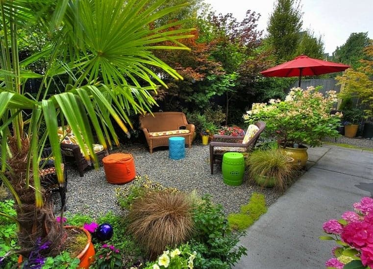 small backyard design for a tropical look