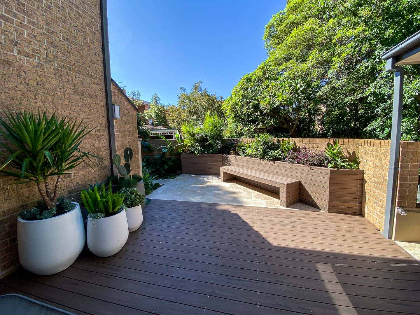 NBG Landscapes Barry Street Neutral Bay (7)